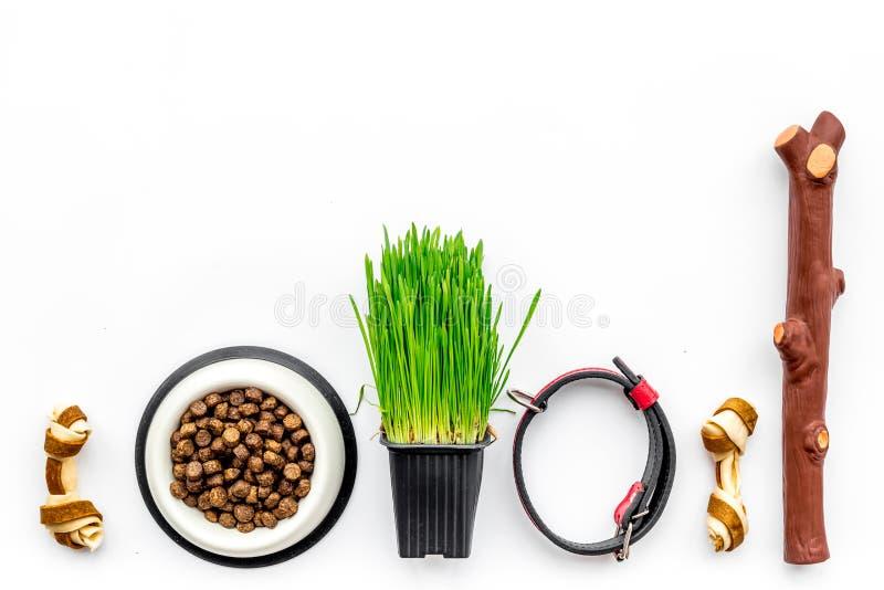 Τα παιχνίδια για το σκυλί κολλούν και το κόκκαλο κορδελλών κοντά στο περιλαίμιο, τα ξηρά τρόφιμα στο κύπελλο και τη χλόη στο δοχε στοκ εικόνα με δικαίωμα ελεύθερης χρήσης