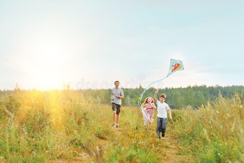 Τα παιδιά απολαμβάνουν με έναν πετώντας ικτίνο στο λιβάδι την ηλιόλουστη ημέρα στοκ φωτογραφίες