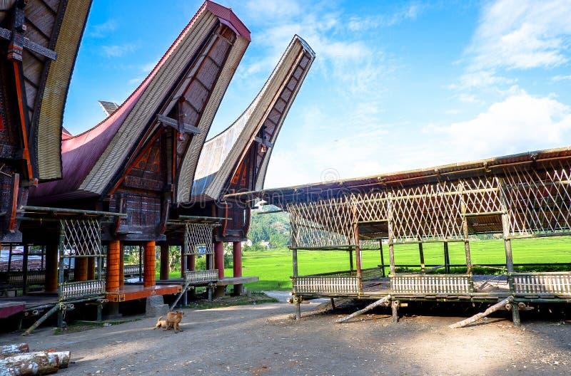 Τα παραδοσιακά χωριά στη Tana Toraja, Sulawesi στοκ εικόνες