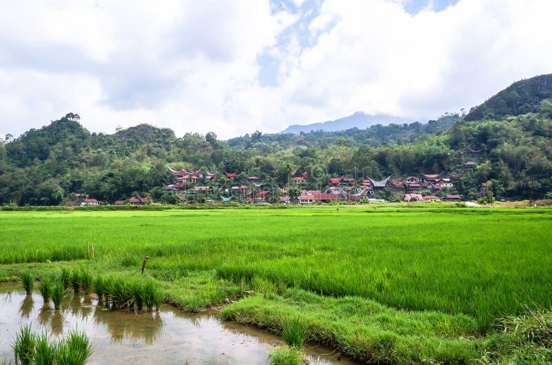 Τα παραδοσιακά χωριά στη Tana Toraja, Sulawesi στοκ φωτογραφία