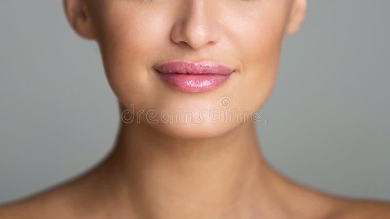 Τα παχουλά χείλια με το Nude ρόδινο χείλι σχολιάζουν στοκ φωτογραφία με δικαίωμα ελεύθερης χρήσης