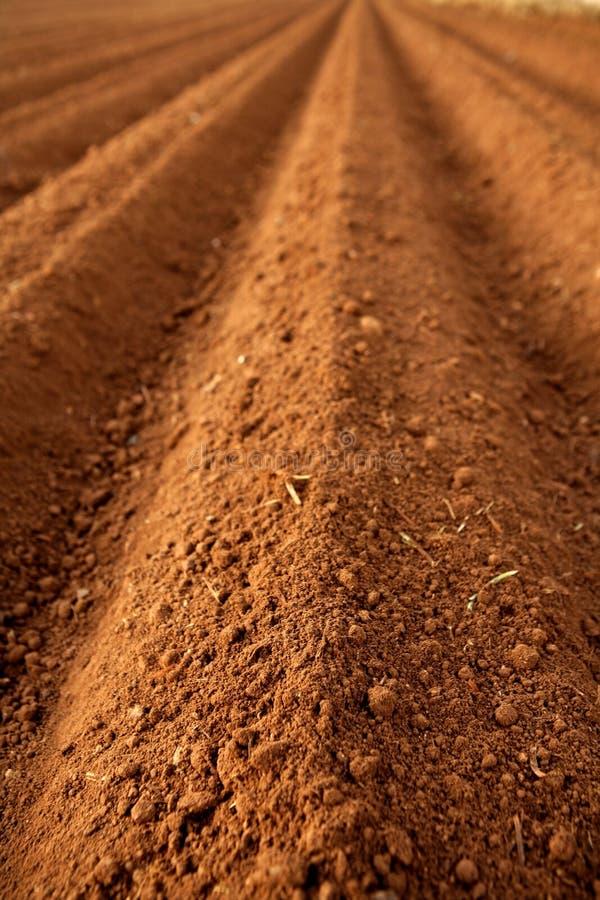 τα πεδία αργίλου γεωργίας όργωσαν το κόκκινο χώμα στοκ φωτογραφίες