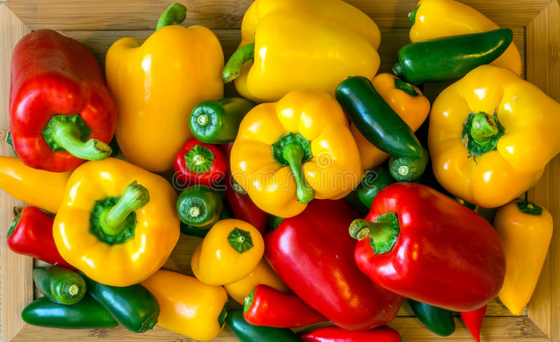 Τα πιπέρια στοκ εικόνες