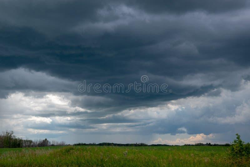 Τα πλησιάζοντας σύννεφα θύελλας επάνω από έναν τομέα canola, Saskatchewan, μπορούν στοκ φωτογραφίες
