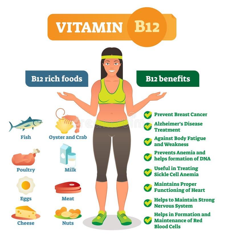 Τα πλούσια εικονίδια και τα οφέλη για την υγεία τροφίμων βιταμινών B12 απαριθμούν, υγιής πληροφοριακή αφίσα τρόπου ζωής Διανυσματ ελεύθερη απεικόνιση δικαιώματος