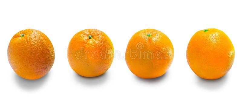 Τα πορτοκάλια είναι τα φρούτα των εσπεριδοειδών στοκ εικόνες
