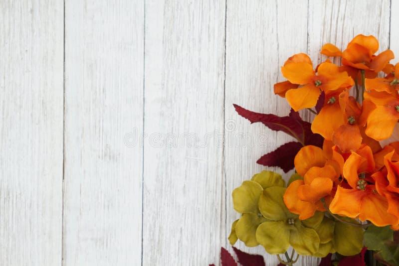 Τα πορτοκαλιά και κόκκινα λουλούδια πτώσης ξεπερασμένος ασπρίζουν το κατασκευασμένο ξύλινο υπόβαθρο στοκ φωτογραφίες