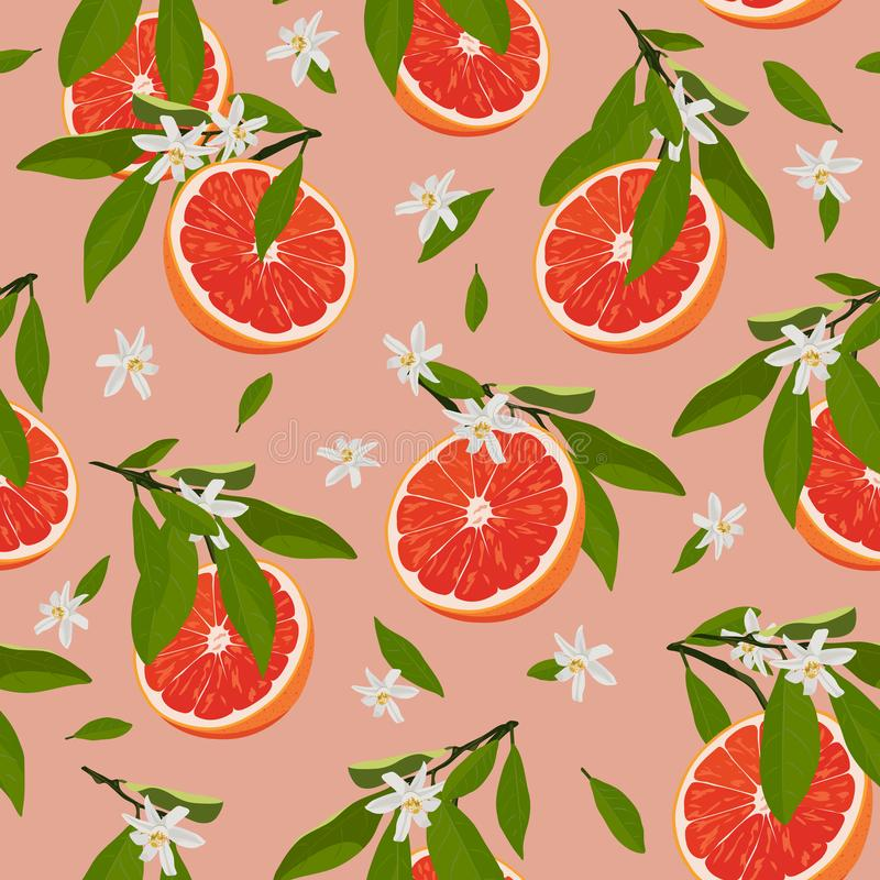 Τα πορτοκαλιά φρούτα τεμαχίζουν το άνευ ραφής σχέδιο με τα λουλούδια και τα φύλλα στο ροδαλό ρόδινο υπόβαθρο Διάνυσμα εσπεριδοειδ ελεύθερη απεικόνιση δικαιώματος