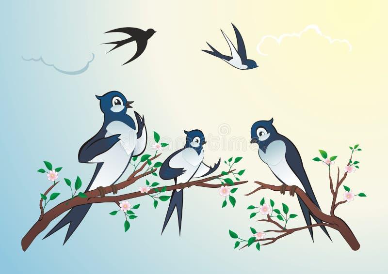 Τα πουλιά καταπίνουν στοκ φωτογραφίες