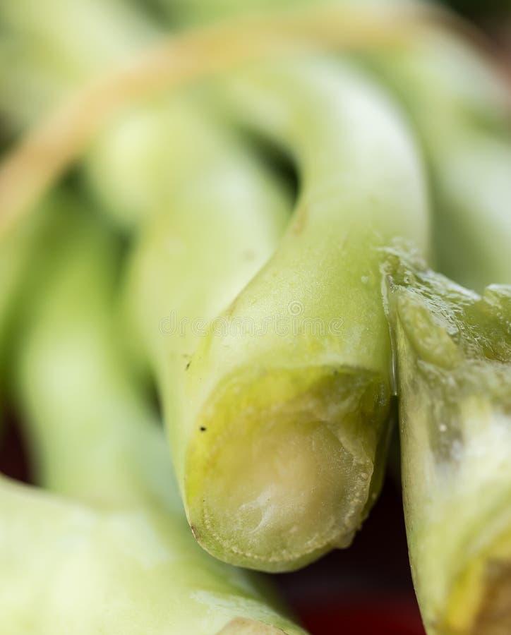 Τα πράσινα λαχανικά δείχνουν την υγιεινή διατροφή και τα πράσινα στοκ φωτογραφία με δικαίωμα ελεύθερης χρήσης
