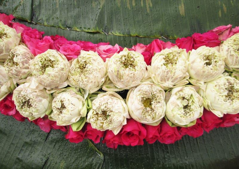 Τα ρόδινα και κόκκινα τριαντάφυλλα, ο ροδανιλίνης-αστέρας και ο άσπρος λωτός στην πράσινη μπανάνα φεύγουν στοκ εικόνες με δικαίωμα ελεύθερης χρήσης