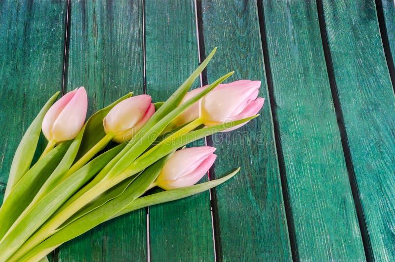 Τα ρόδινα λουλούδια τουλιπών, γένος Tulipa, οικογένεια Liliaceae με το κιβώτιο δώρων μορφής καρδιών στο πράσινο υπόβαθρο bokeh, κ στοκ εικόνες με δικαίωμα ελεύθερης χρήσης