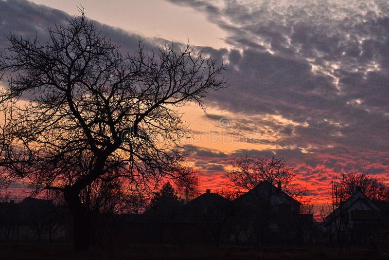 Τα σκοτεινά περιγράμματα των σπιτιών στον φλεγόμενο ουρανό στοκ φωτογραφία με δικαίωμα ελεύθερης χρήσης