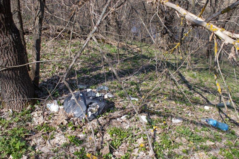 Τα σκουπίδια διασκόρπισαν στα δασικά μπουκάλια, τα δοχεία και άλλα σκουπίδια που διασκορπίστηκαν στο δάσος στοκ εικόνες