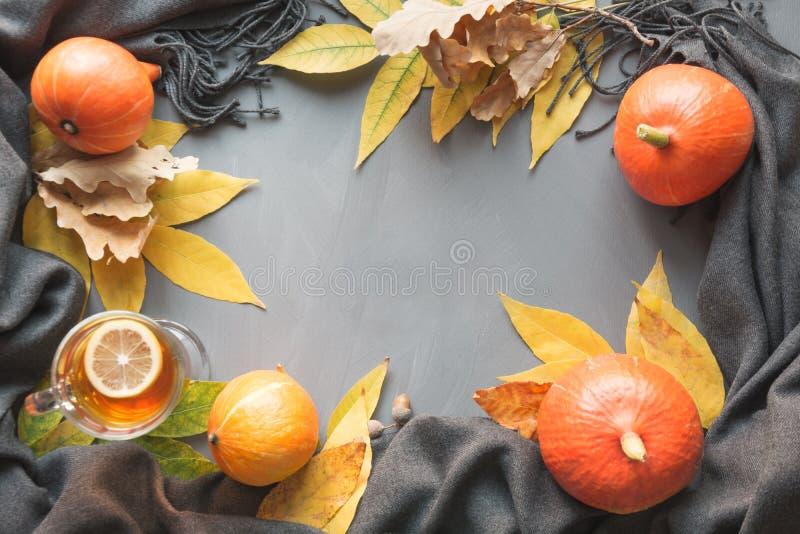 Τα σύνορα πτώσης και ακόμα η ζωή, κολοκύθα, ξεραίνουν τα φύλλα, το γκρίζο μαντίλι για άνετο και τη θέρμανση στον γκρίζο πίνακα Το στοκ εικόνες με δικαίωμα ελεύθερης χρήσης