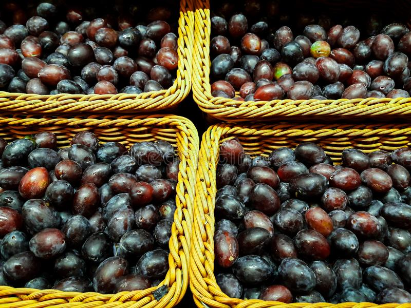 Τα υγιή φρέσκα δαμάσκηνα καταναλώνονται άμεσα από τη γεωργία στοκ φωτογραφίες