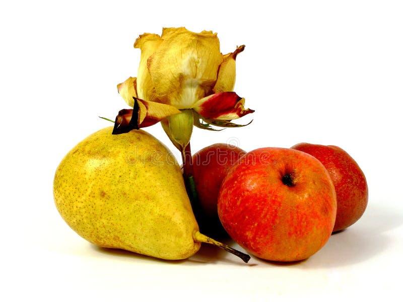 Τα φρούτα και αυξήθηκαν στοκ εικόνες