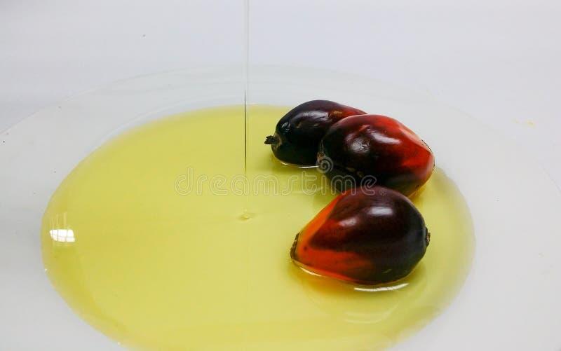 Τα φρούτα και το φοινικέλαιο φοινικών, ένα φρούτα κόβονται για να παρουσιάσουν πυρήνα του στοκ εικόνα
