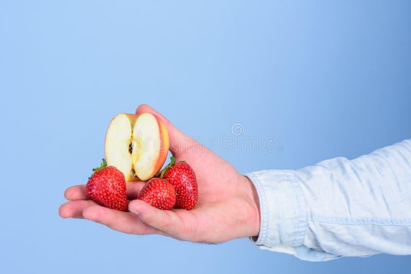 Τα φρούτα οργανικά μεταχειρίζονται ή τσιμπάνε Οδηγίες οι ίδιοι Φρέσκια συγκομιδή των ώριμων μούρων φρούτων Το χέρι προτείνει παίρ στοκ φωτογραφίες