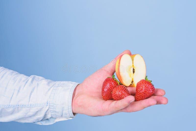 Τα φρούτα οργανικά μεταχειρίζονται ή τσιμπάνε Οδηγίες οι ίδιοι Φρέσκια συγκομιδή των ώριμων μούρων φρούτων Το χέρι προτείνει παίρ στοκ εικόνες