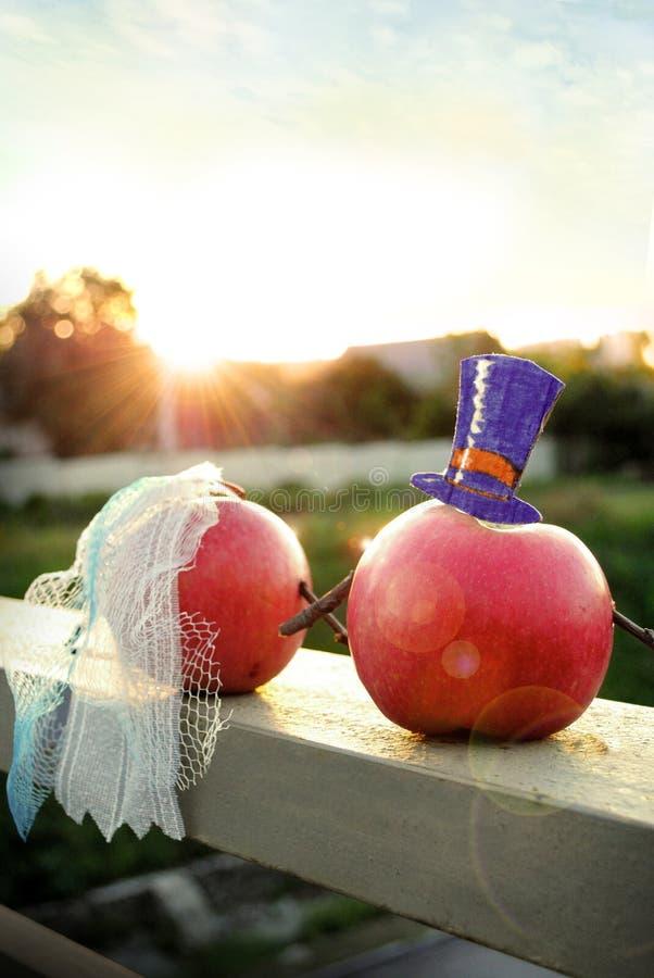 Τα φρούτα παντρεύουν το απόγευμα και εξετάζουν το ηλιοβασίλεμα στοκ φωτογραφία