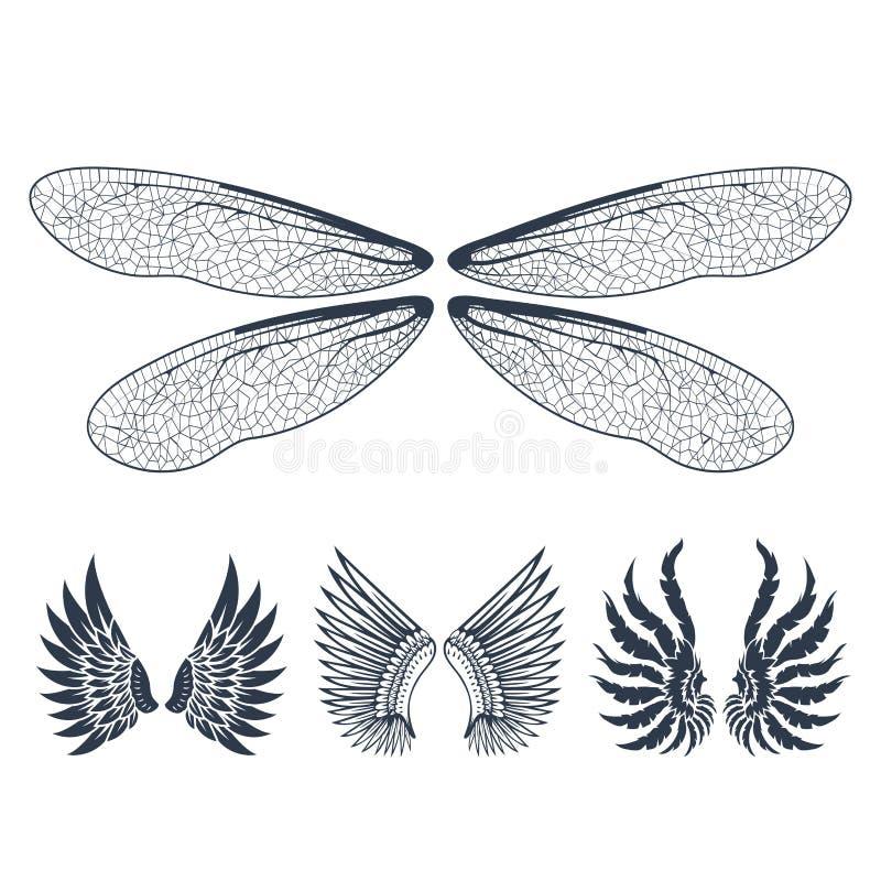 Τα φτερά απομόνωσαν τη ζωική φτερών γραναζιών πουλιών ελευθερίας διανυσματική απεικόνιση σχεδίου ειρήνης πτήσης φυσική απεικόνιση αποθεμάτων