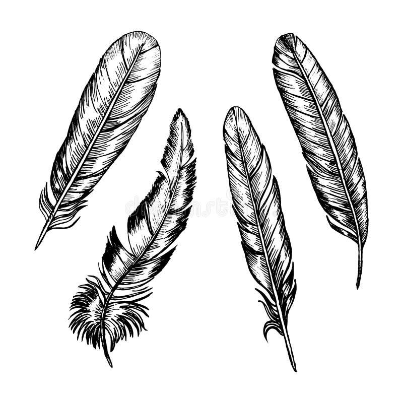Τα φτερά καθορισμένα το χέρι σύρουν το σκίτσο διάνυσμα ελεύθερη απεικόνιση δικαιώματος