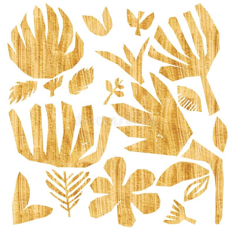 Τα φωτεινά χρυσά φύλλα λουλουδιών συλλογής κολάζ διακλαδίζονται σε ετοιμότητα απομονωμένο λευκό υποβάθρου που χρωματίζονται με ακ διανυσματική απεικόνιση