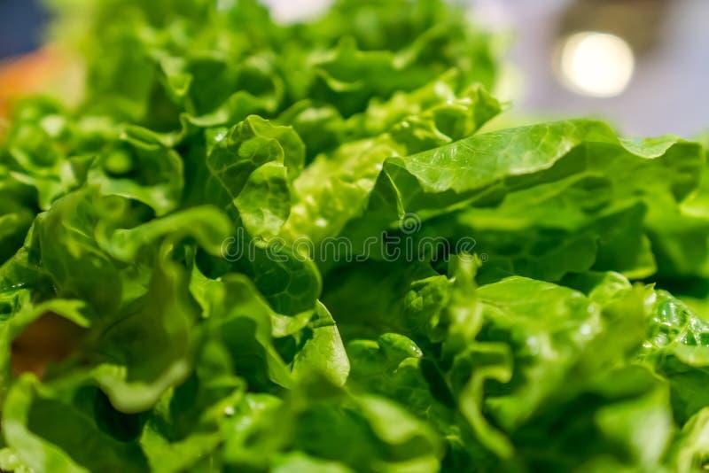 Τα φω'τα είναι όπως τα πράσινα λαχανικά στοκ φωτογραφίες