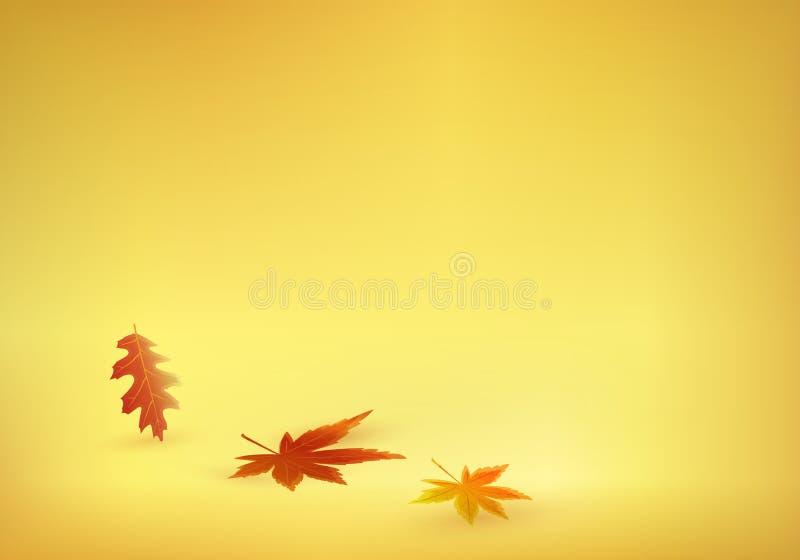 Τα φύλλα φθινοπώρου έρχονται στο στερεό κίτρινο πορτοκάλι backgroun στοκ εικόνα με δικαίωμα ελεύθερης χρήσης