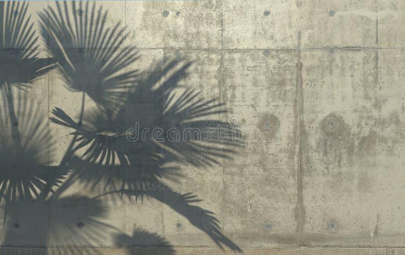 Τα φύλλα φοινικών πετούν μια σκιά στο συμπαγή τοίχο Εννοιολογική δημιουργική απεικόνιση με το διάστημα αντιγράφων Συγκεκριμένη ζο ελεύθερη απεικόνιση δικαιώματος