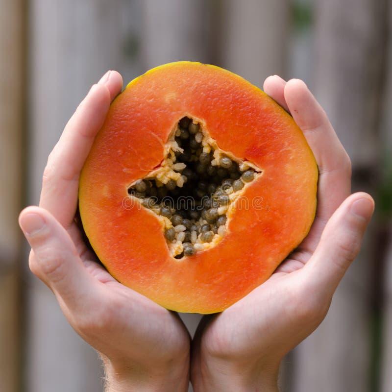 Τα χέρια που κρατούν μια papaya φέτα, επανδρώνουν τα χέρια, τετραγωνικά, τροπικά φρούτα, χέρια, Boca Chica, Δομινικανή Δημοκρατία στοκ εικόνες