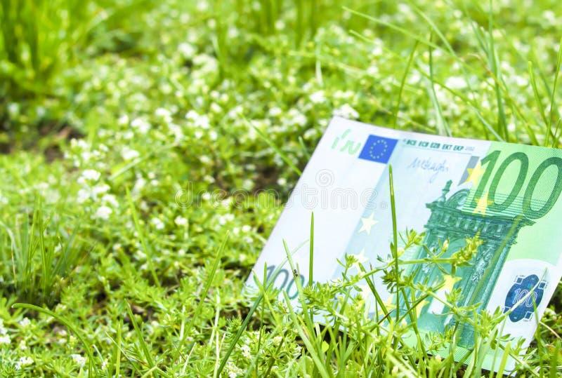 Τα χρήματα Λογαριασμός χρηματοδότησης 100 ευρώ Πράσινη χλόη Αυξανόμενο ευρώ στοκ εικόνες