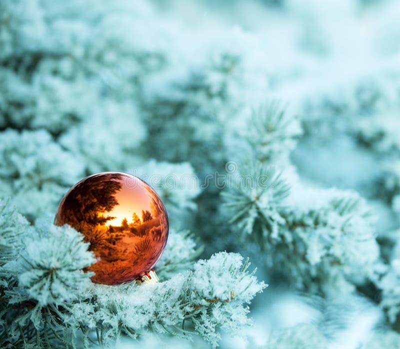 Τα Χριστούγεννα διακοσμούν τη σφαίρα στοκ φωτογραφίες