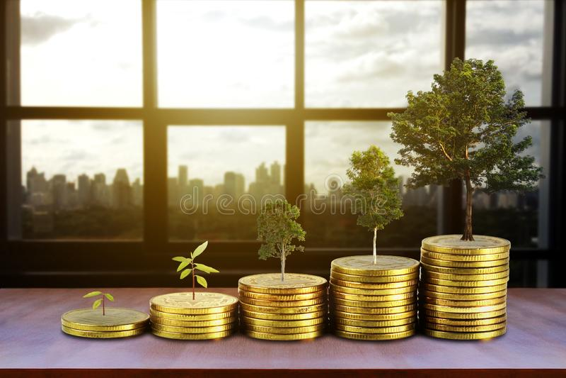 Τα χρυσά νομίσματα συσσωρεύουν το σωρό και τα χρήματα ανάπτυξης και αυξάνονται τα δέντρα που μεγαλώνουν στο υπόβαθρο πόλεων, που  στοκ εικόνα
