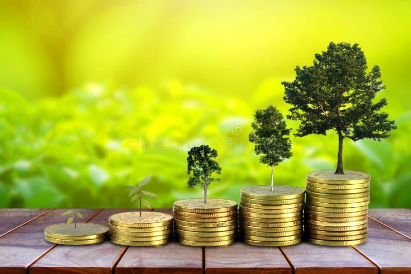 Τα χρυσά νομίσματα συσσωρεύουν το σωρό και τα χρήματα ανάπτυξης και αυξάνονται τα δέντρα που μεγαλώνουν στο υπόβαθρο φύσης, που κ στοκ φωτογραφία