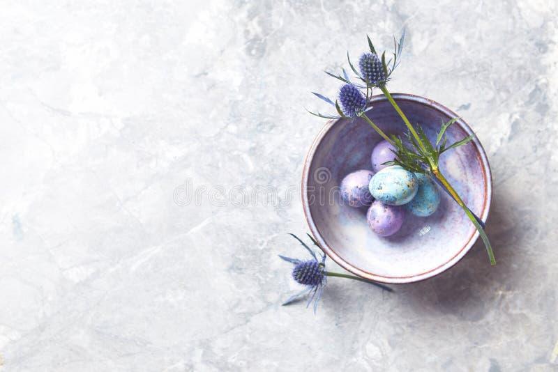 Τα χρωματισμένα αυγά ορτυκιών και τα λουλούδια ελαιόπρινου θάλασσας σε ένα κεραμικό επίπεδο κύπελλων βάζουν τη ρύθμιση διανυσματική απεικόνιση