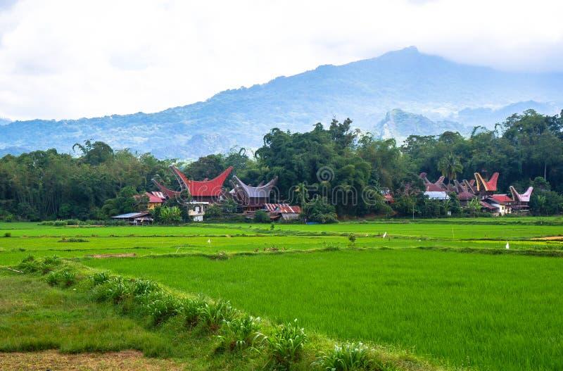 Τα χωριά στη Tana Toraja, Sulawesi στοκ εικόνες