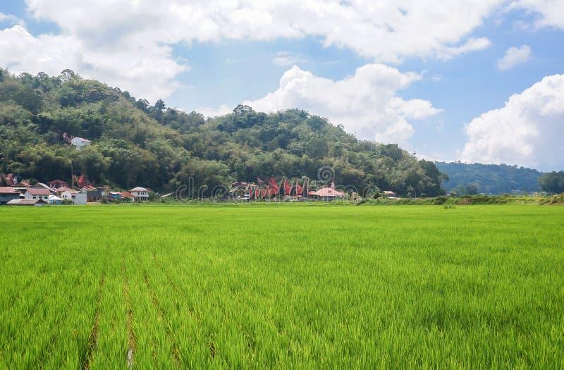 Τα χωριά στη Tana Toraja, Sulawesi στοκ φωτογραφίες