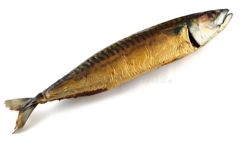 τα ψάρια που απομονώθηκαν το λευκό κάπνισαν στοκ εικόνες με δικαίωμα ελεύθερης χρήσης
