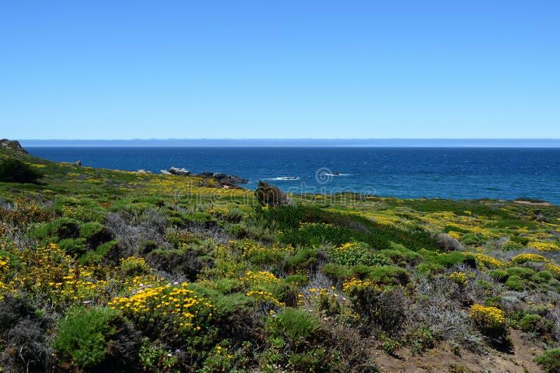 Τα όμορφα τοπία κατά μήκος του κράτους Καλιφόρνιας καθοδηγούν το ένα, ασβέστιο, ΗΠΑ στοκ εικόνα με δικαίωμα ελεύθερης χρήσης