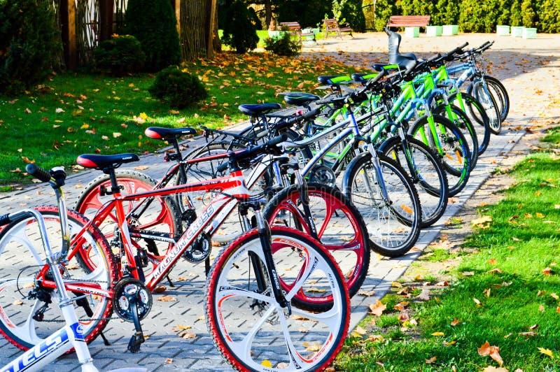 Τα όμορφα φίλαθλα πολύχρωμα ποδήλατα βουνών για την αναψυχή και τον αθλητισμό σταθμεύουν σε μια σειρά Λευκορωσία, Μινσκ, στις 12  στοκ εικόνες