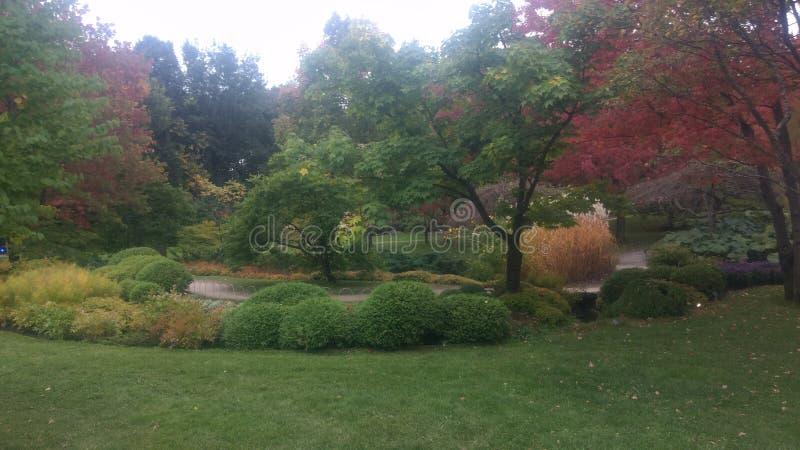 Τα όμορφα χρώματα του φθινοπώρου στοκ εικόνες με δικαίωμα ελεύθερης χρήσης