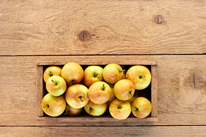 Τα ώριμα μήλα σε ένα ξύλινο κιβώτιο στο τραχύ ξύλινο αγροτικό υπόβαθρο, επίπεδο βάζουν, τοπ άποψη στοκ εικόνες