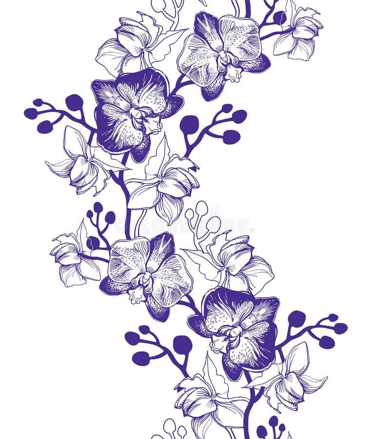 Τα Floral άνευ ραφής σύνορα με το χέρι που σύρεται ανθίζουν τις ορχιδέες απεικόνιση αποθεμάτων