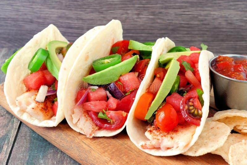 Τα tacos ψαριών με το salsa καρπουζιών και τα αβοκάντο κλείνουν επάνω την πλάγια όψη στοκ εικόνες με δικαίωμα ελεύθερης χρήσης