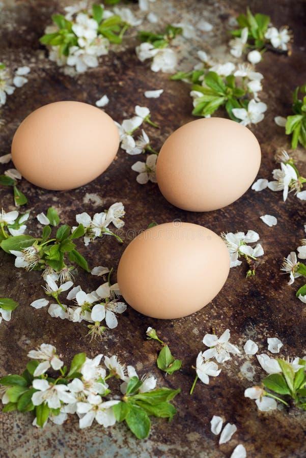 Τα Uncolored φυσικά αυγά Πάσχας, ευτυχής έννοια Πάσχας με την άνοιξη ανθίζουν, αναδρομικό υπόβαθρο Πάσχας στοκ φωτογραφία με δικαίωμα ελεύθερης χρήσης