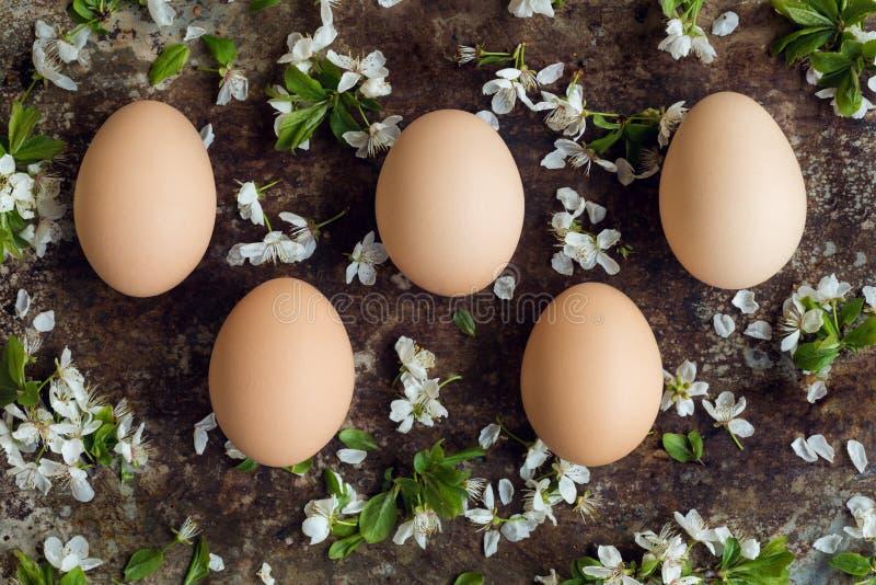 Τα Uncolored φυσικά αυγά Πάσχας, ευτυχής έννοια Πάσχας με το άσπρο ελατήριο ανθίζουν, αναδρομικό Πάσχα στοκ εικόνες