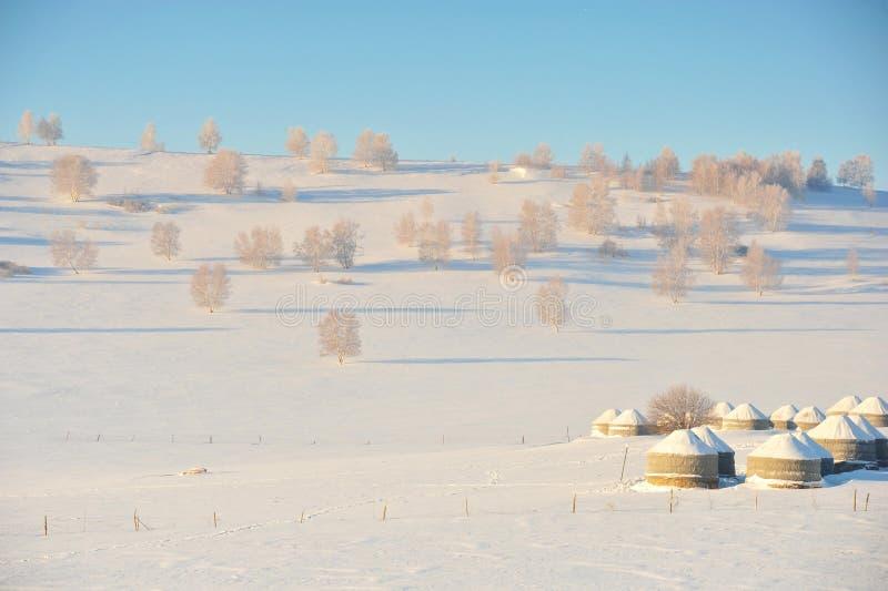 Τα yurts στοκ εικόνες