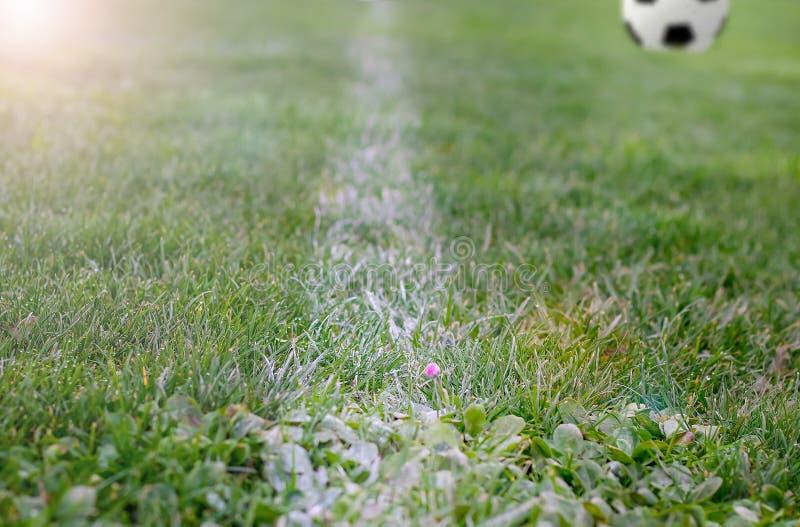 Τεμάχιο ενός αγωνιστικού χώρου ποδοσφαίρου με μια άσπρη γραμμή στην πράσινη χλόη με τη θολωμένη σφαίρα ποδοσφαίρου Εστίαση εκλεκτ στοκ εικόνες με δικαίωμα ελεύθερης χρήσης